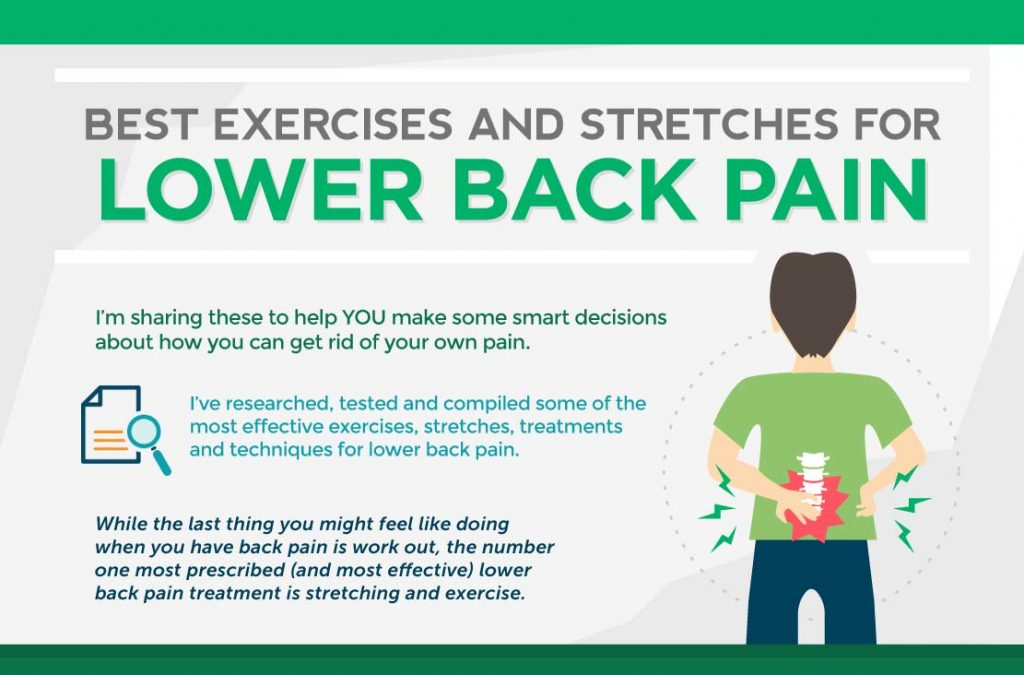 Cropped inforgraphic of best exercises for lower back pain linking to full image